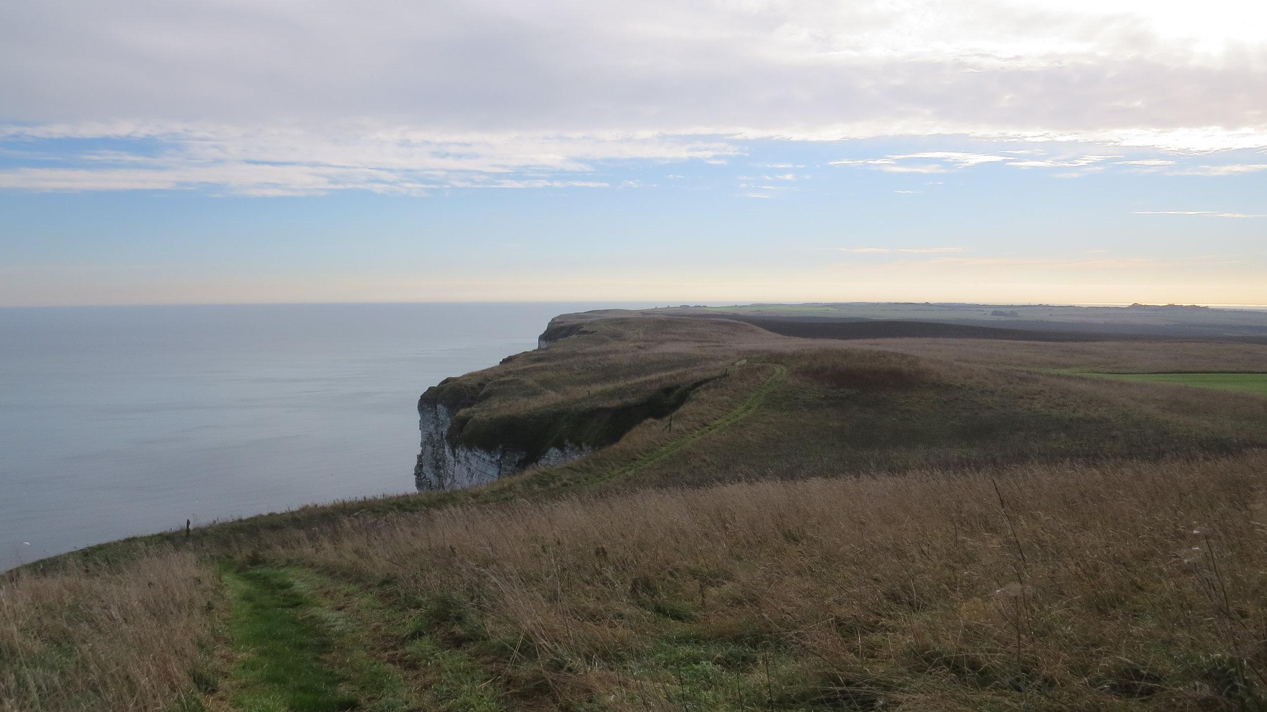 Speeton Cliffs