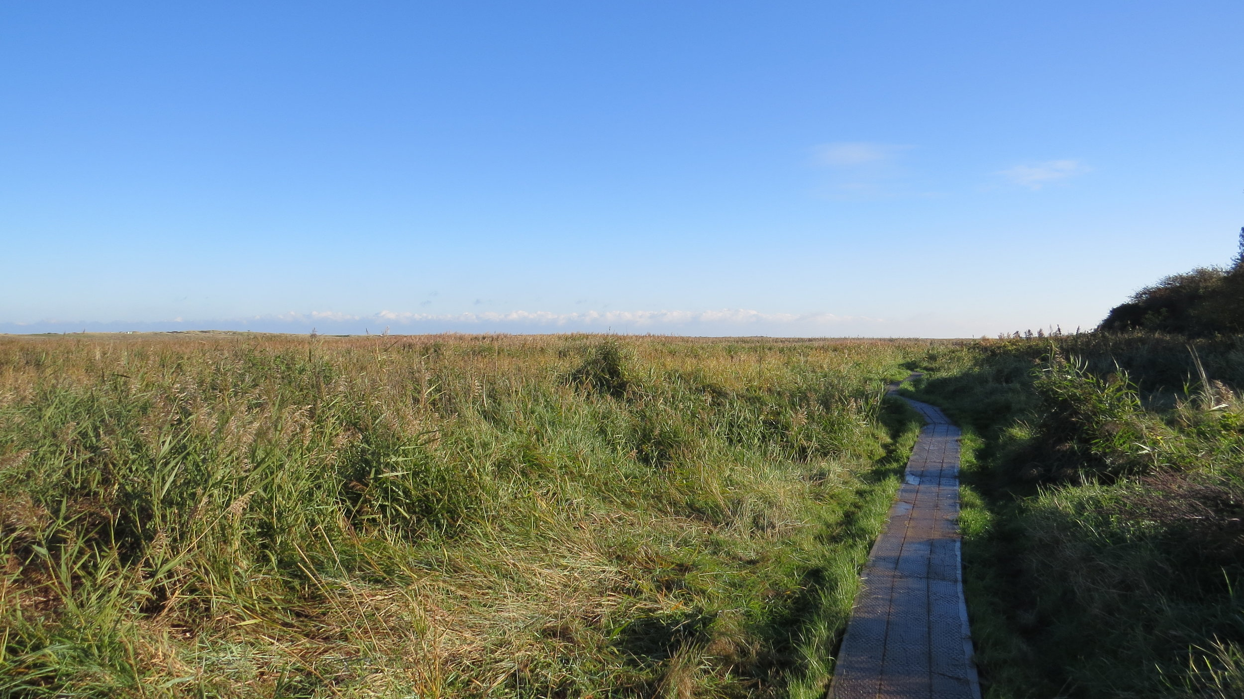 Boardwalk near Brancaster