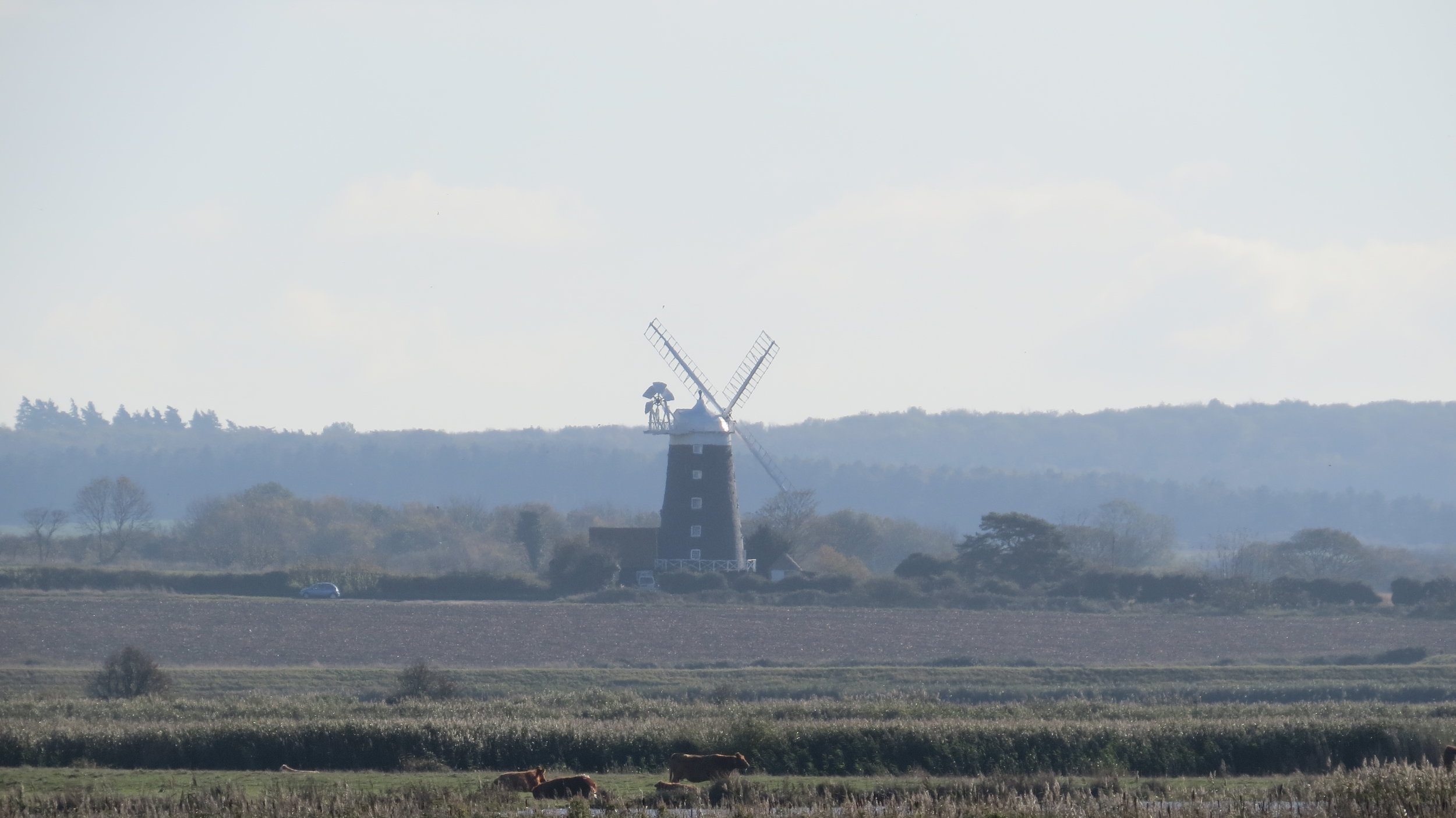 Burnham Overy Mill I