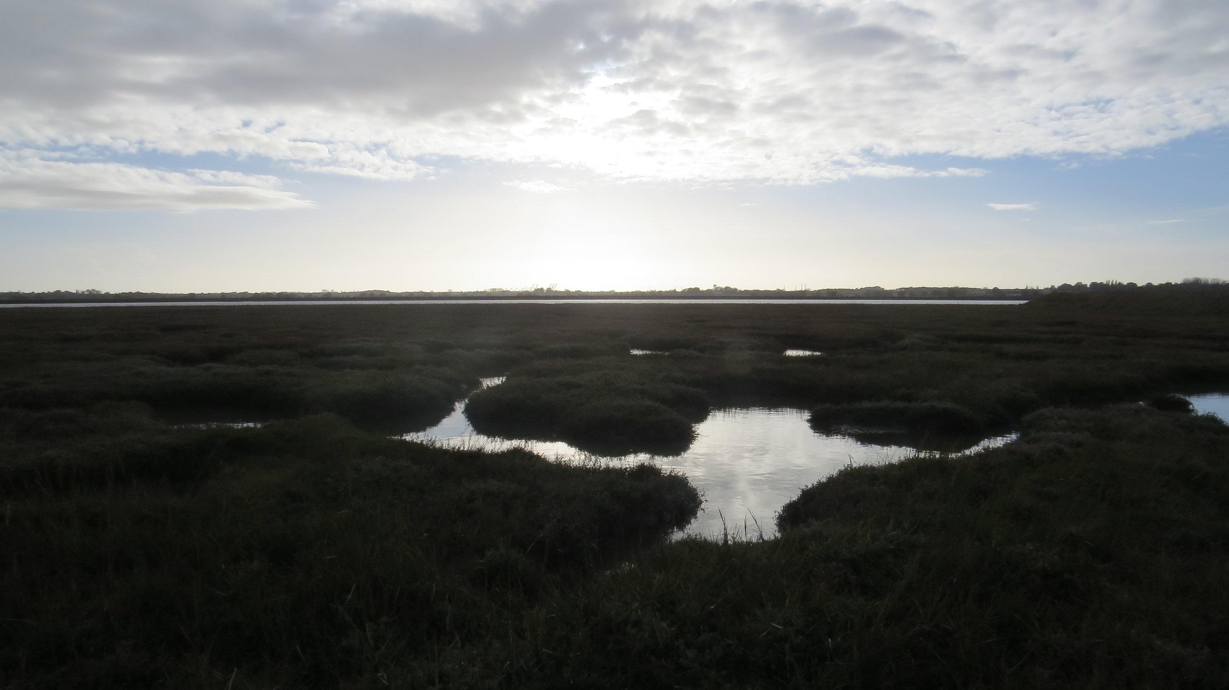 Mud Flats/Marshes