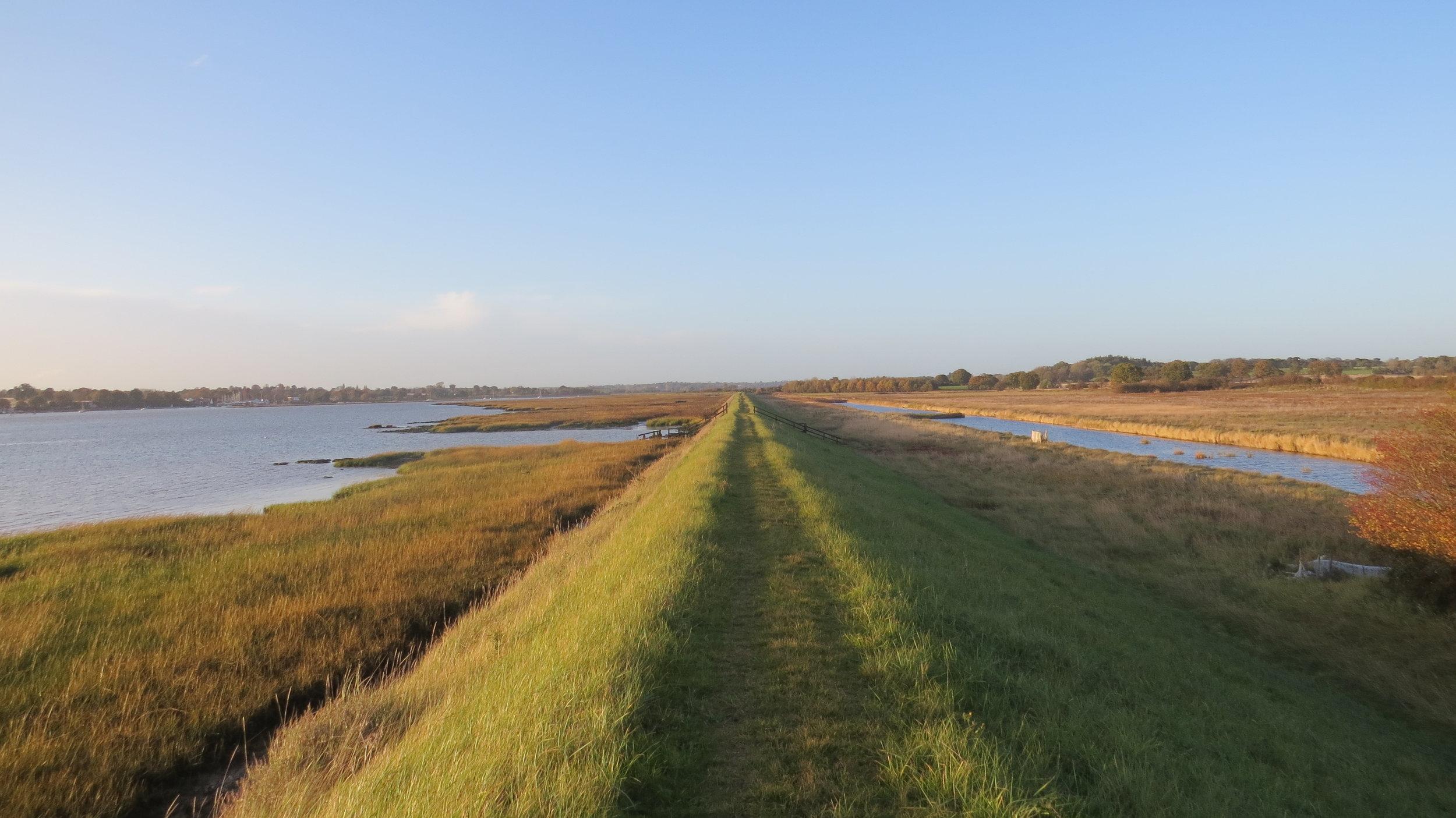 Straight Embankment Walking