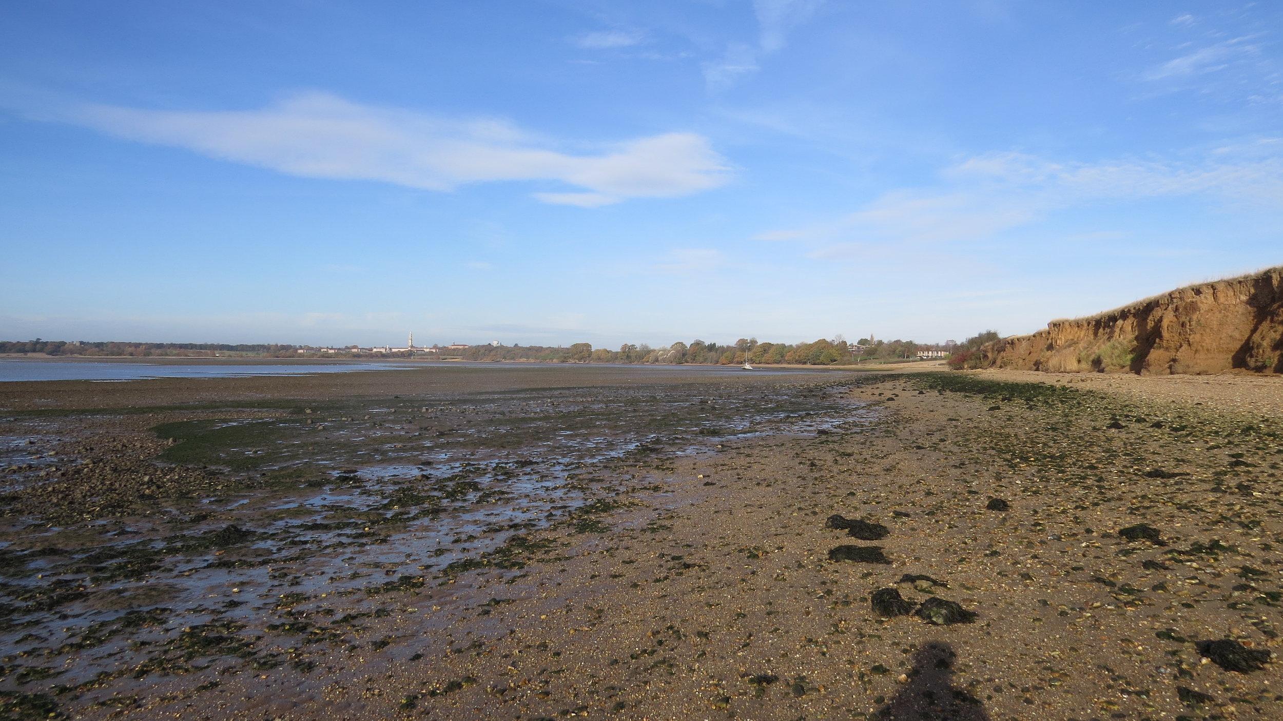 Beach/Mudflat Walking I
