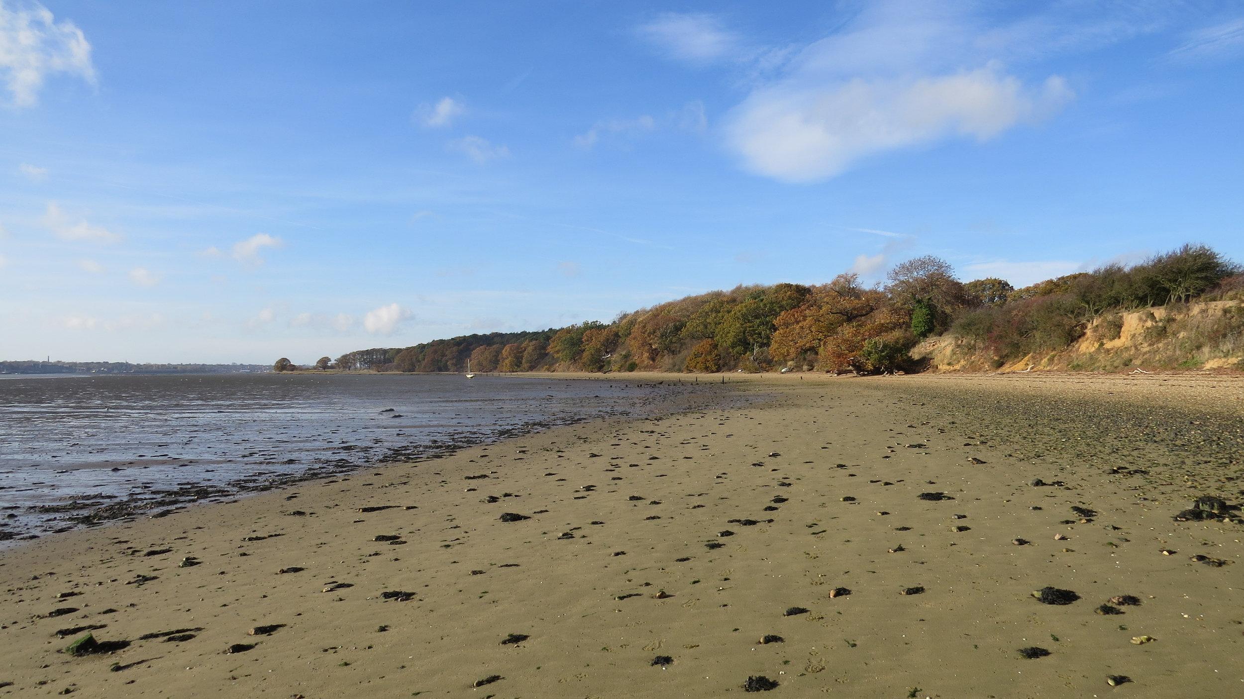 Beach/Mudflat Walking III