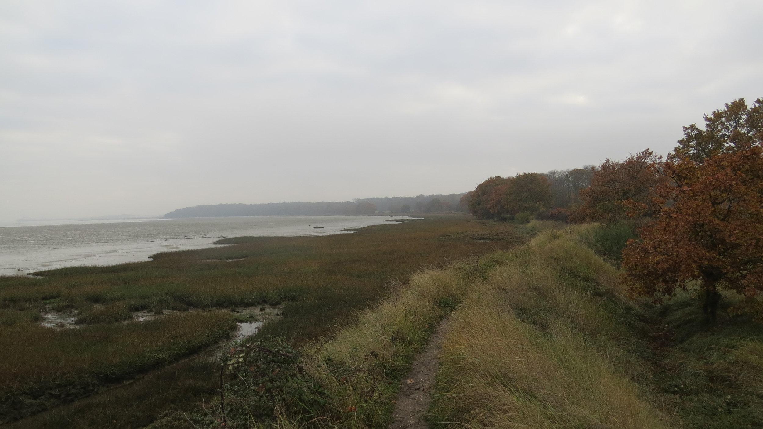 Embankment near Wrabness