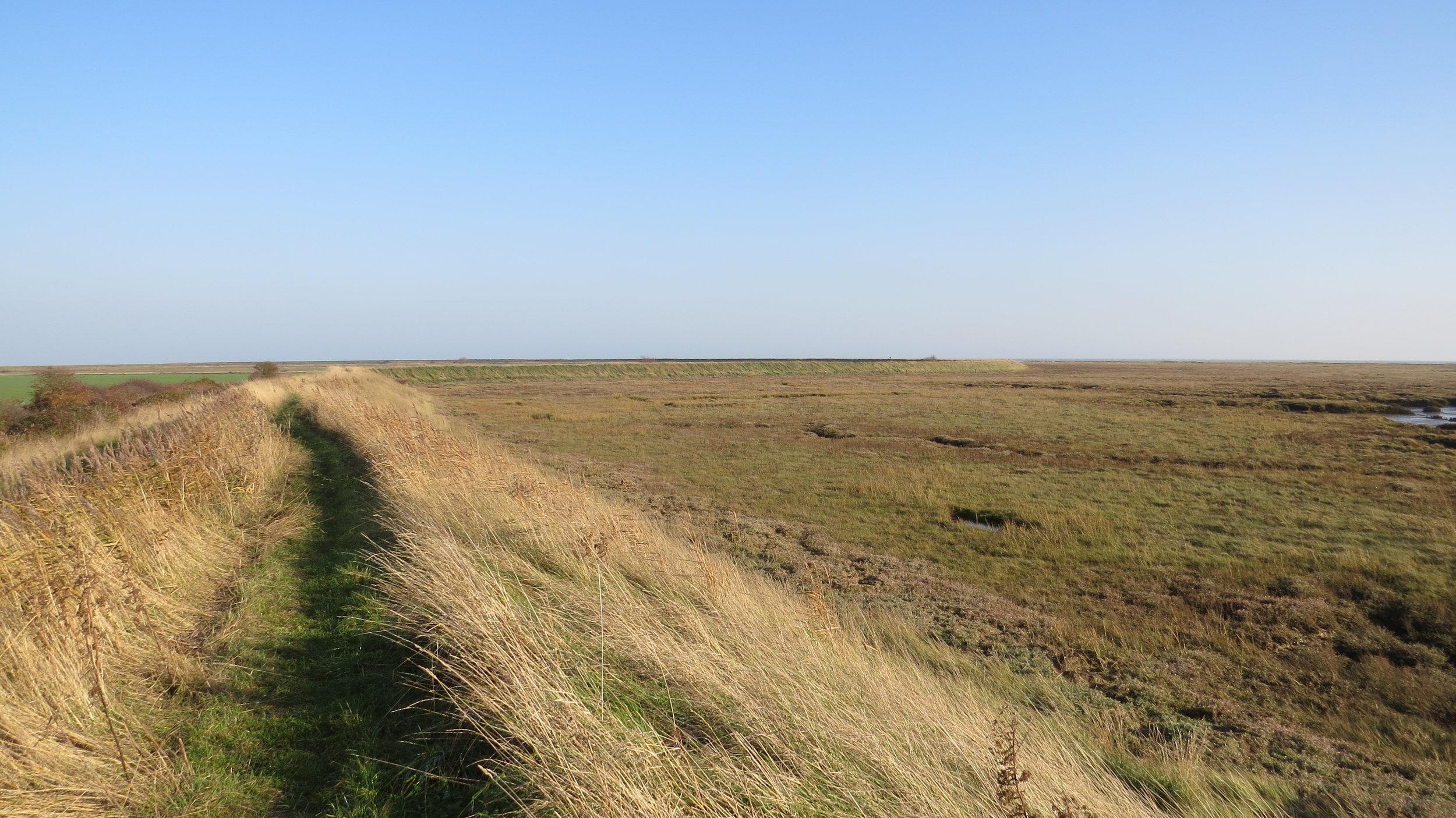 Sea Embankment Walking
