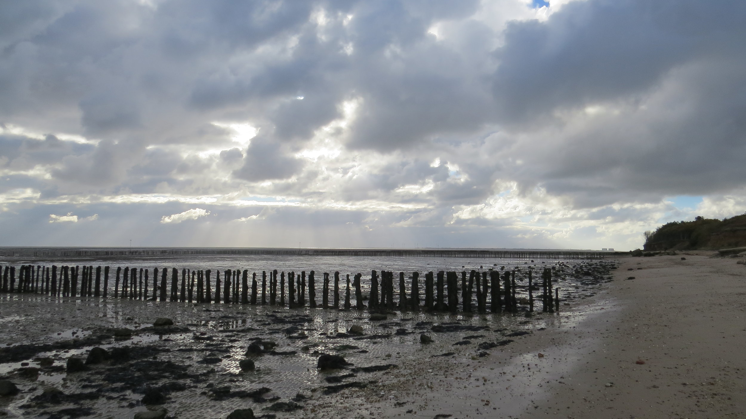 Sea Defences or Old Oyster Beds?