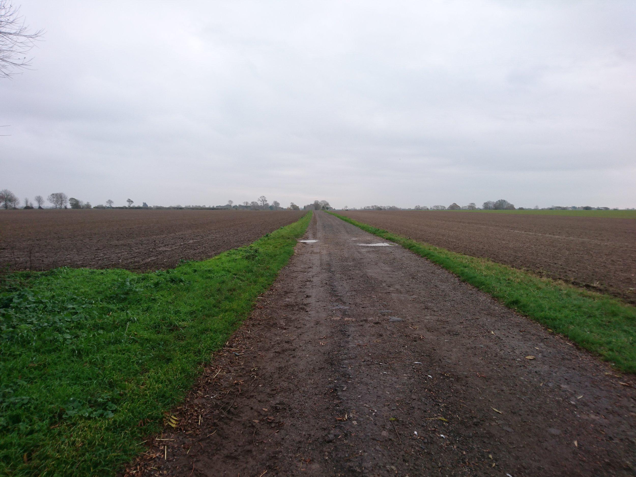 Track across Farm