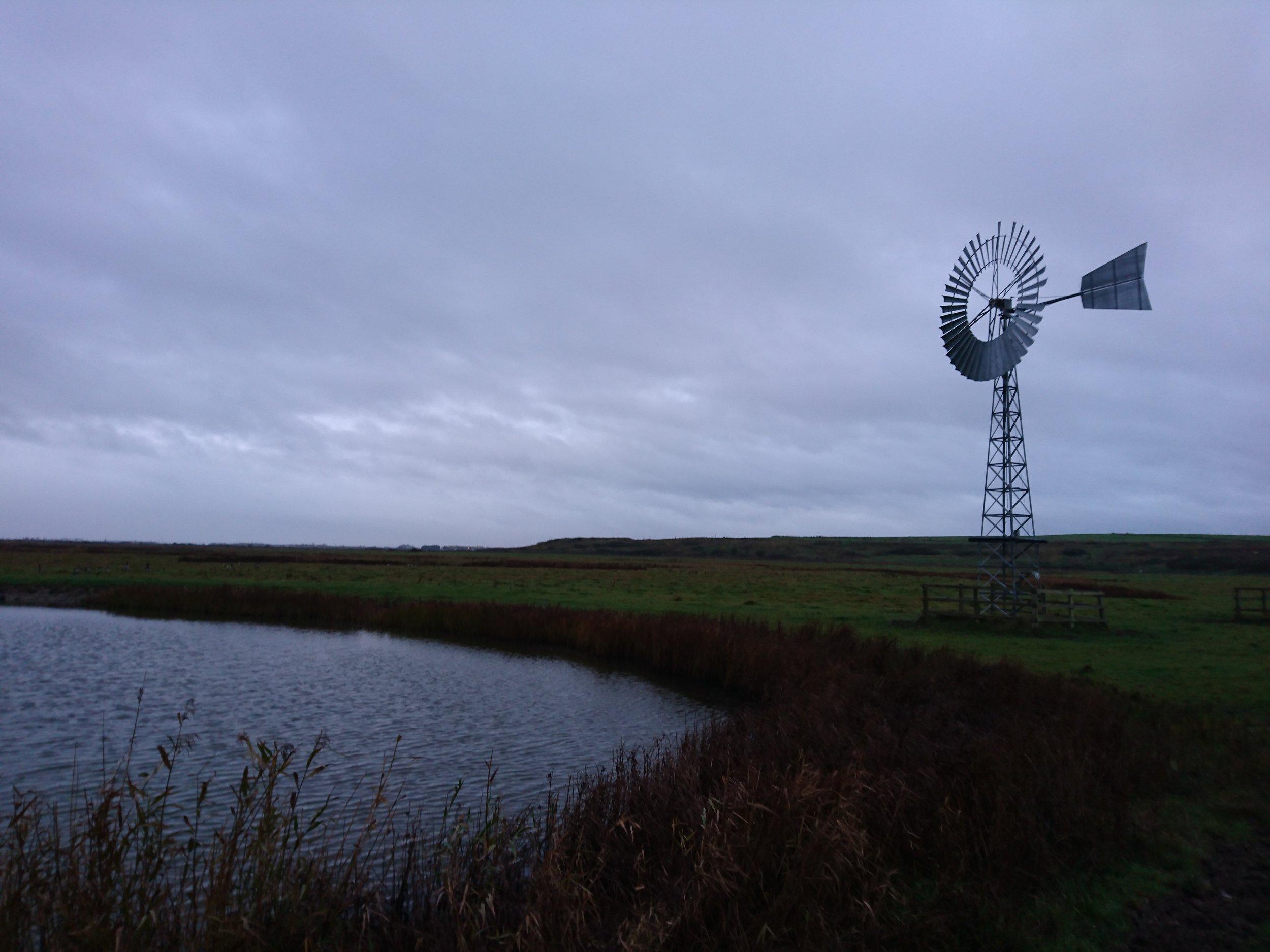 Bowers Marsh Wind Vane