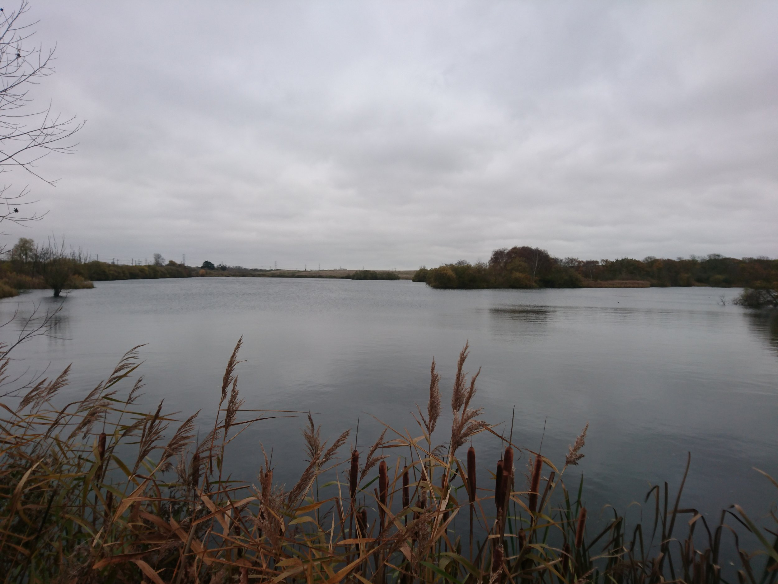 Mucking Marshes