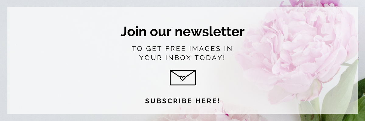 Newsletter Opt-In