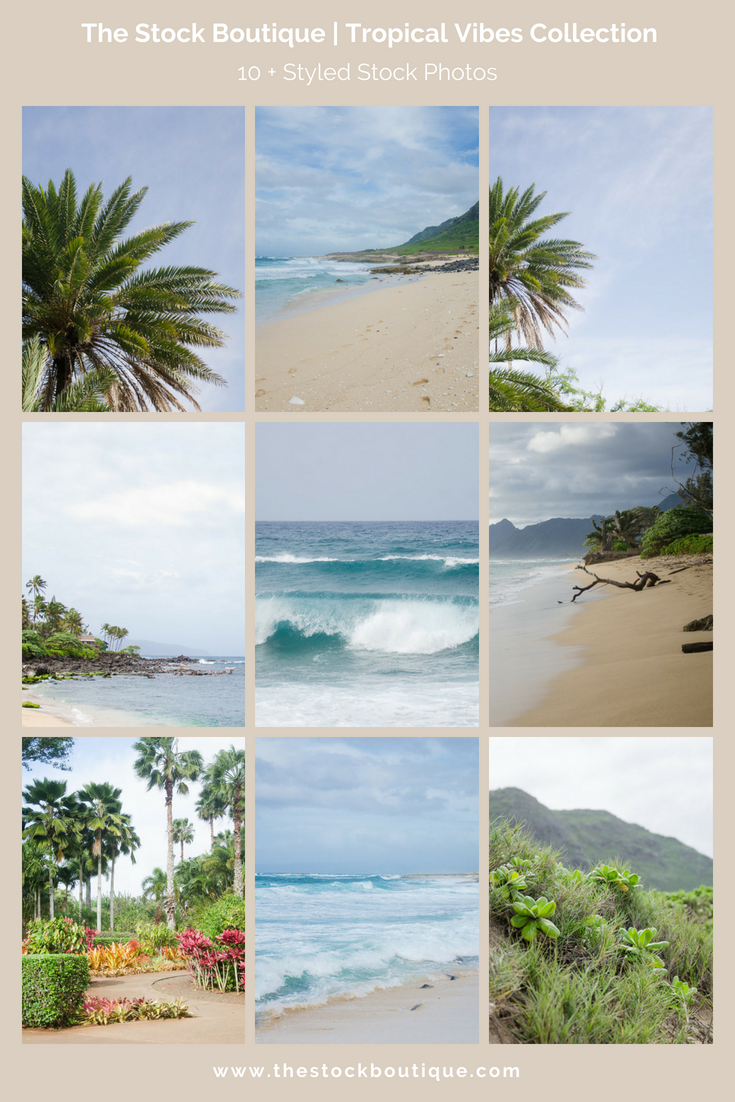 Tropical Vibes Stock Photography Collection