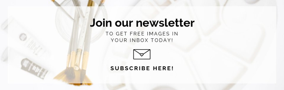 The Stock Boutique Newsletter #freestockphotos