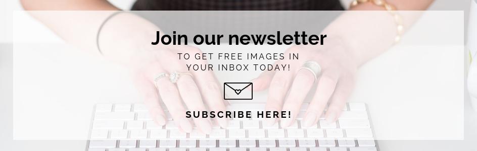 the-stock-boutique-newsletter.jpg