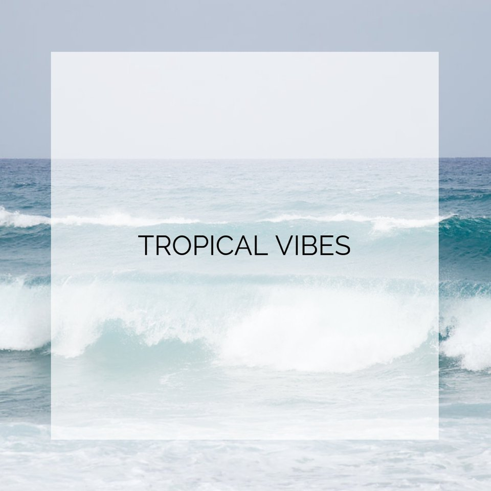tropical-stock-collection.jpg