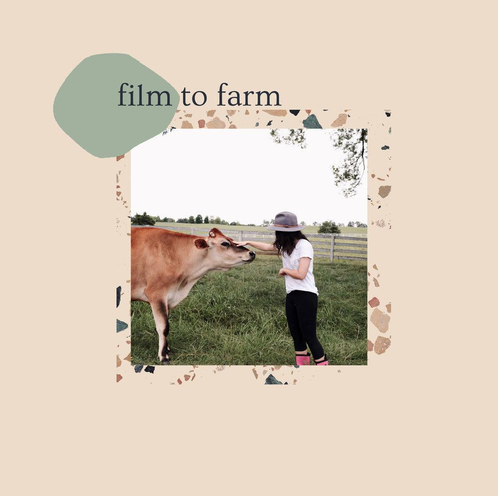 pineapple radio: film to farm