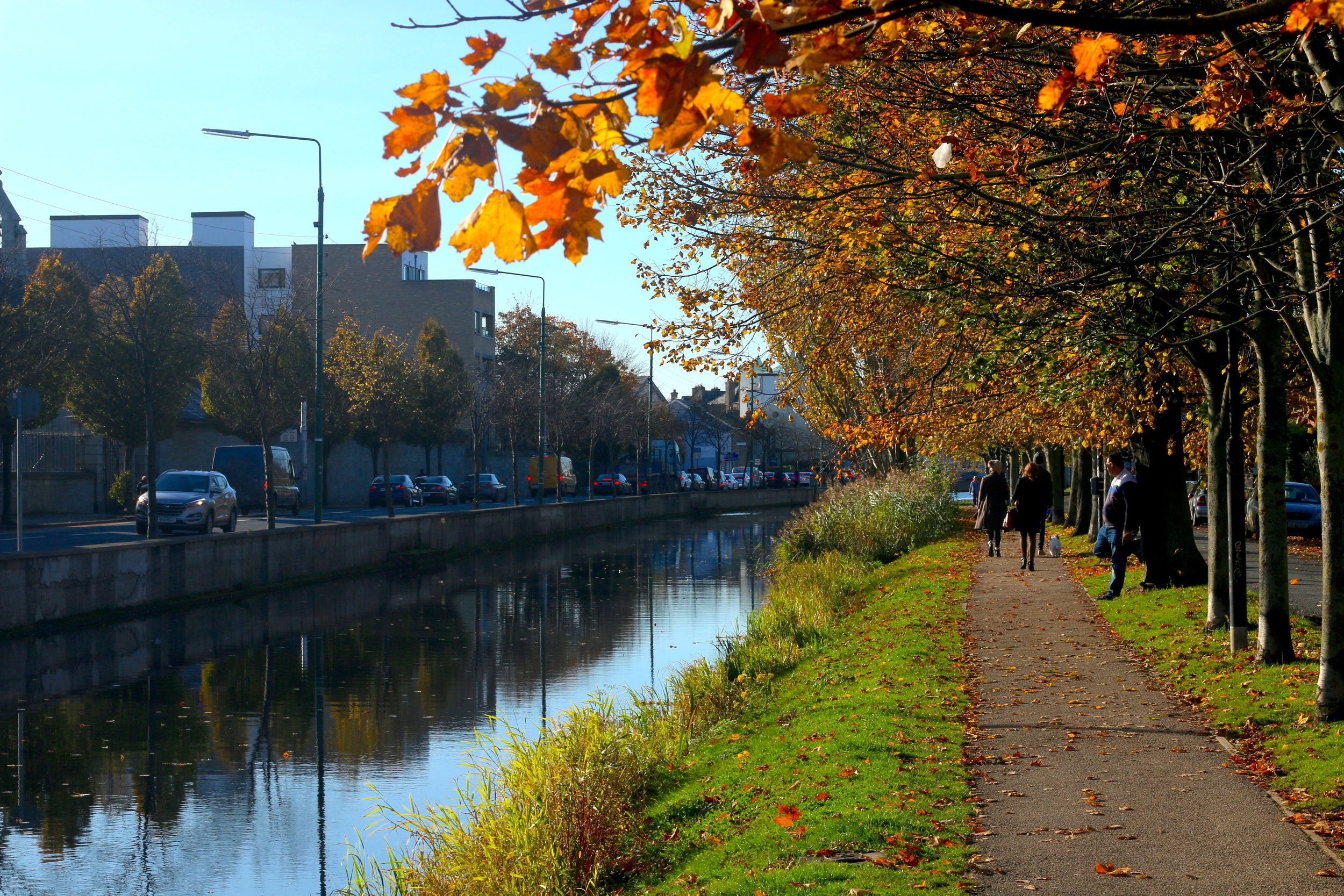 Looking for a break from rehearsals? The canal is only 166 steps away.