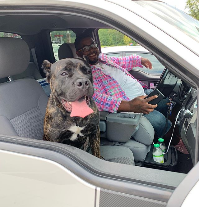 """Update: Alex named the dog Ralph and they had the best day. Ralph gets to go to the nursery tomorrow for the first time. Also, Ralph is now a #Baltimore resident; he is officially a """"dug"""" #landscaping #landscapingdog #DirectorOfMorale #zeromodelnova"""