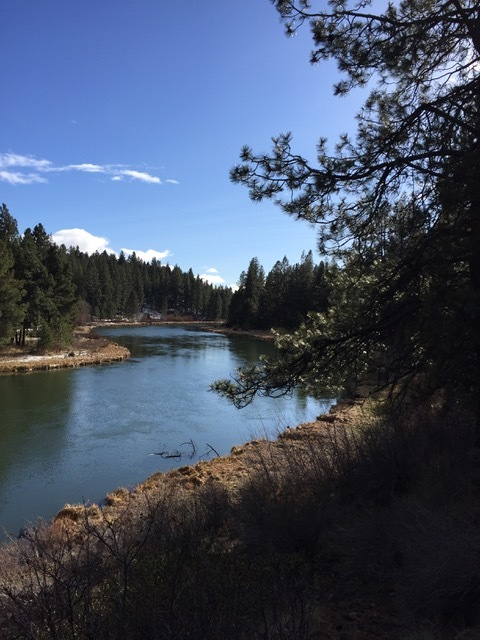 Overlooking the Deschutes River. Image courtesy of Cameron Cesa.