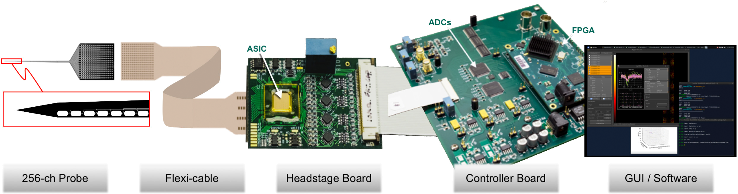 Figure 1.  Ephys system building blocks that are being disseminated to the user community. Provided components constitute a complete measurement system, including: silicon neural nanoprobe; flexi-cable that connects probe to headstage electronics; the headstage board itself, containing our custom 1024-channel ASIC; the back-end controller board with USB-3 output; first-gen graphical user interface software for controlling system and acquiring data (Mac and PC compatible). The ribbon cable picture between the headstage and the controller boards will, in practice, be replaced with a fine wire bundle to permit free behavior of the subject under study.