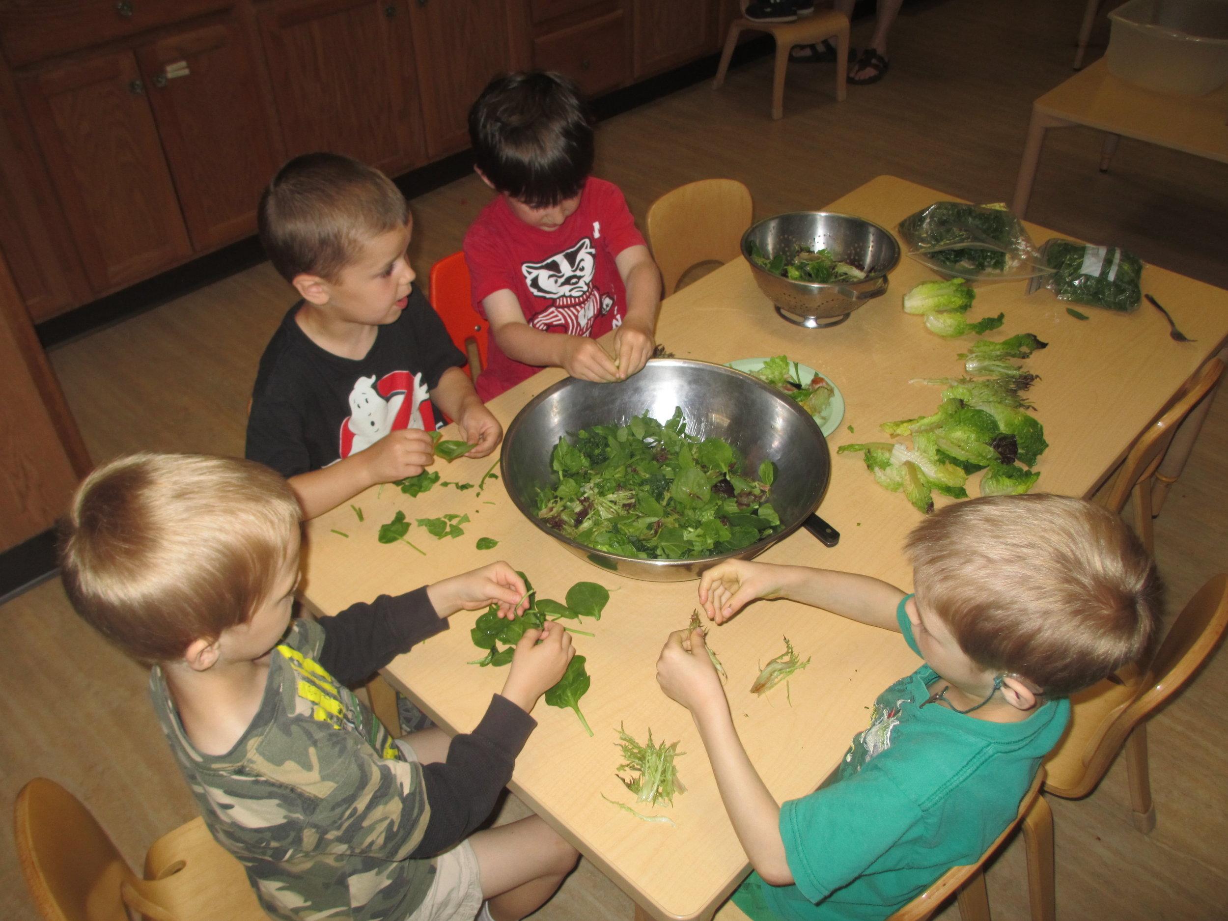 Nutrition_salad from garden.jpg