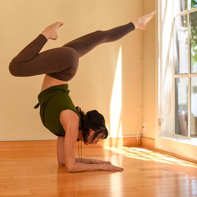 Take your ARM BALANCES to the NEXT LEVEL this Sunday March 31st @mettayogamarin. . Go beyond the basics & learn more a detailed breakdown of more complex arm balances.  We will move from classic handstands and forearm balances to explore lesser-practiced but equally fun and challenging arm balances like Mayurasana (Peacock Pose), Tittibhasana (Firefly Pose), Eka Pada Galavasana (Flying Pigeon), Astavakrasana (8-Angle Pose), and Eka Pada Koundinyasana. The sequencing is designed to challenge and inspire you. With a willingness to try something new, you will take you practice to the NEXT LEVEL! . . To sign up, follow the link in the comments. 🙏🏽 . . . #yogainspiration #yogaworkshop #yogateacher #sfyoga #yogasf #bayareayoga #inversion #armbalance #elevate #yogachallenge #pinchamayurasana  #forearmstand #yogalife #yogapractice