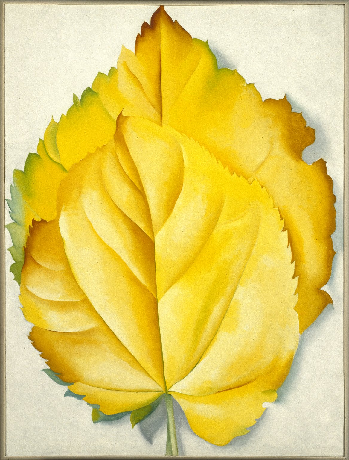 Two Yellow Leaves.jpg