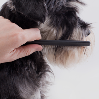 $5 OFF Your First Grooming Appointment - simply mention the