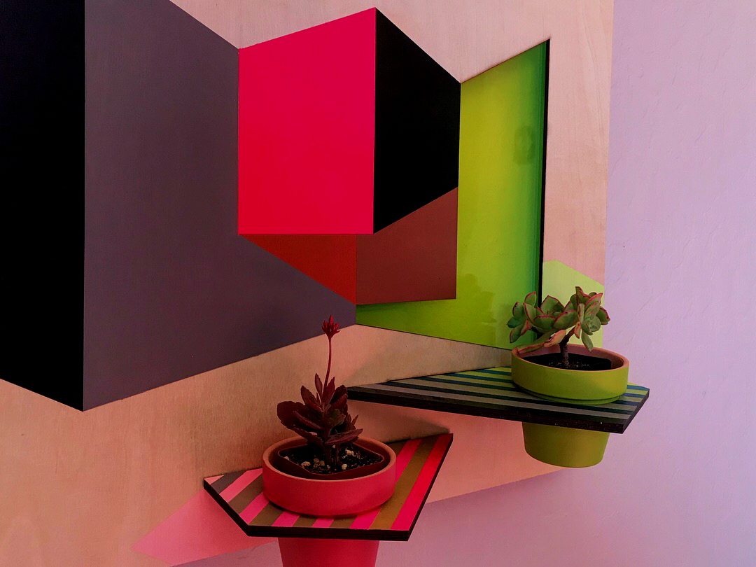 "Rachel Barnes Shape Shifter, 2018 Acrylic on Wood, Plexiglass, Succulent 20x16x1.5"""