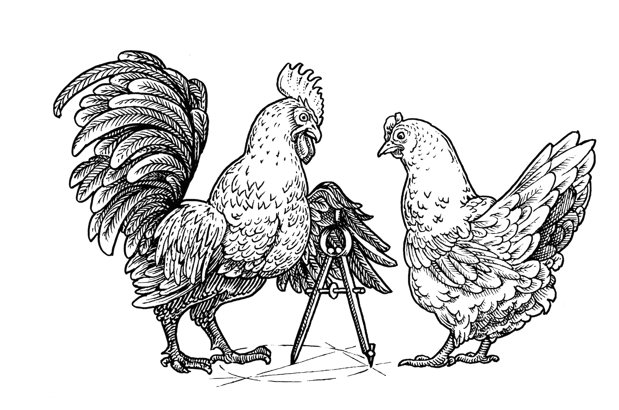 chicken scratch.png