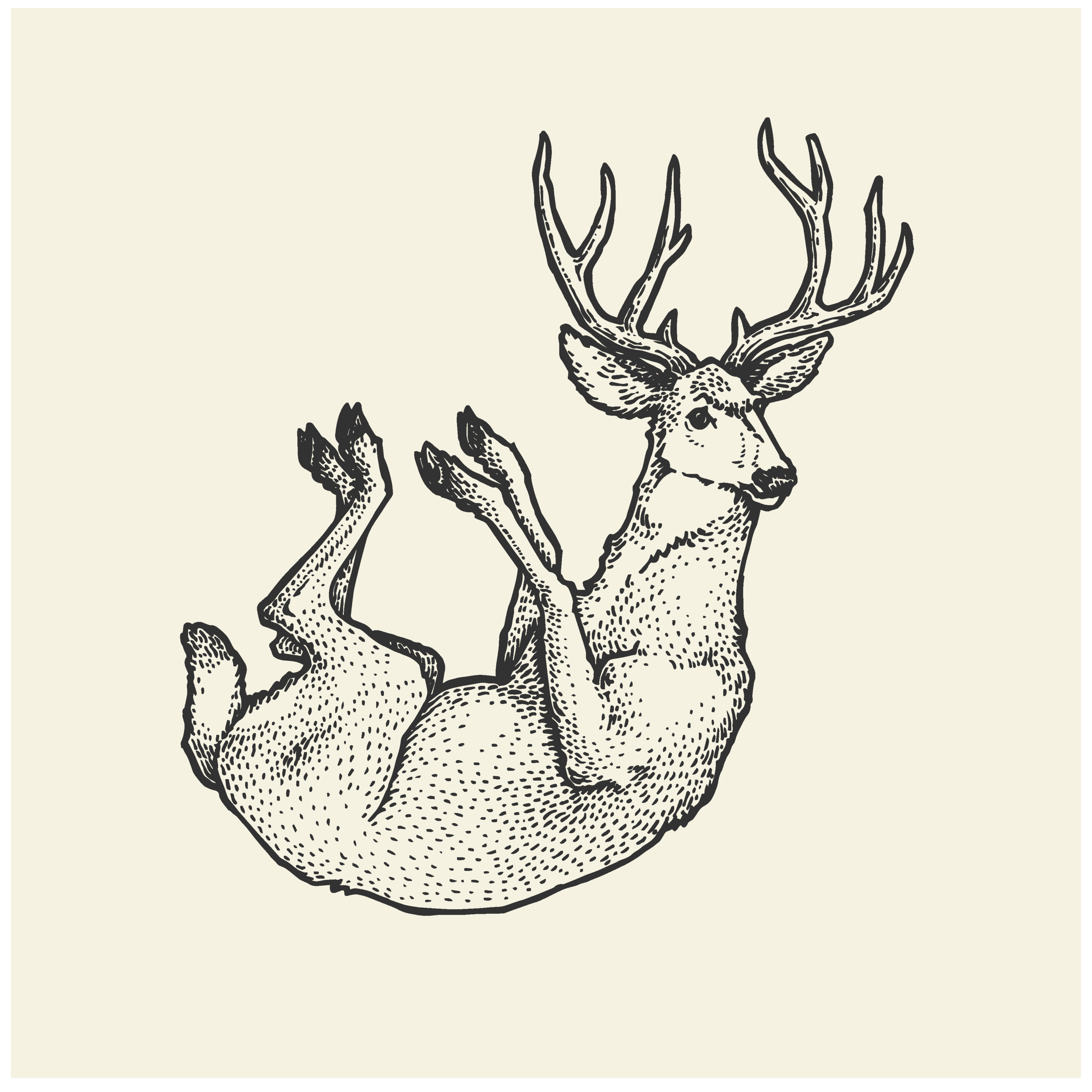 Illustration Portfolio Levity of Animals-06.png