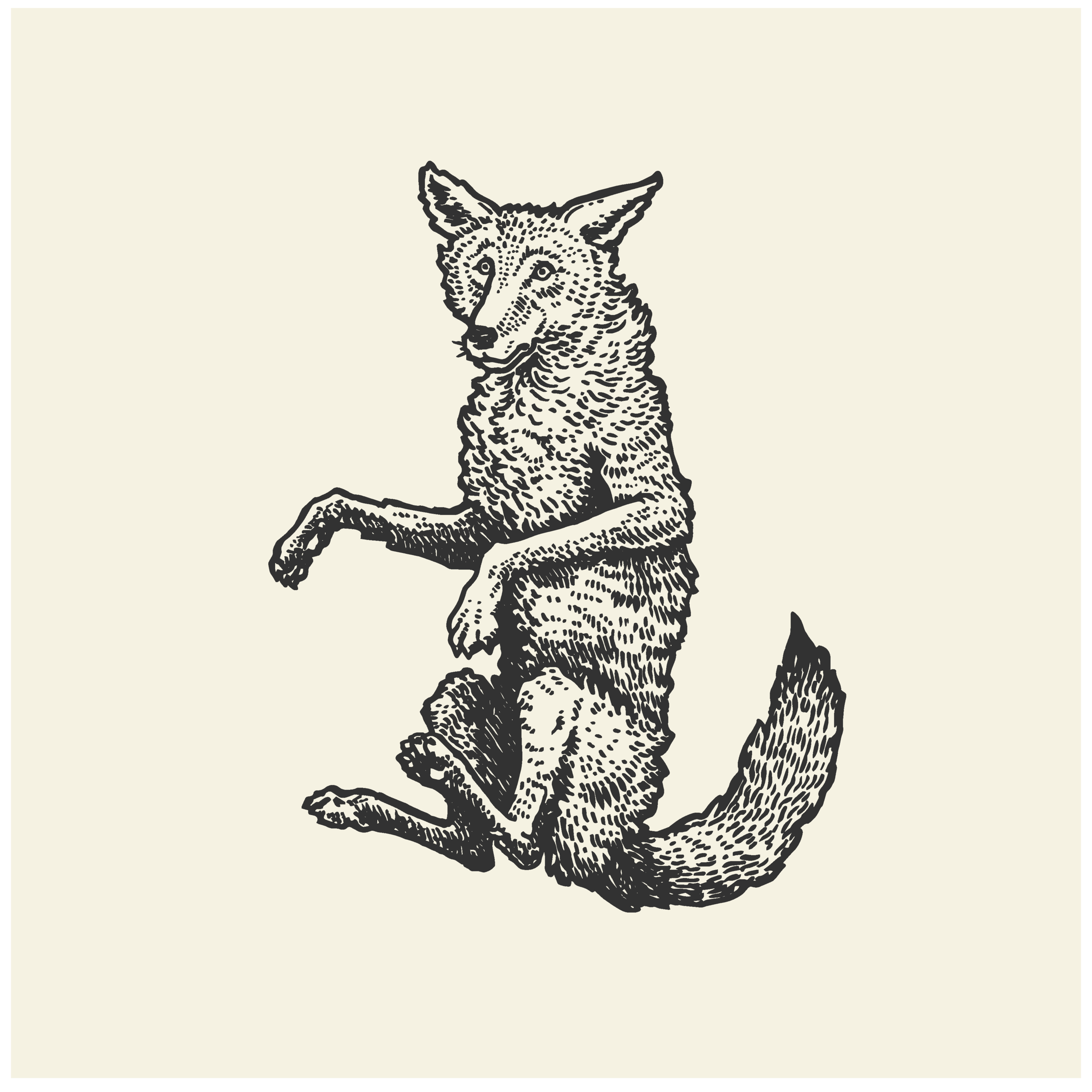 Illustration Portfolio Levity of Animals-12.png