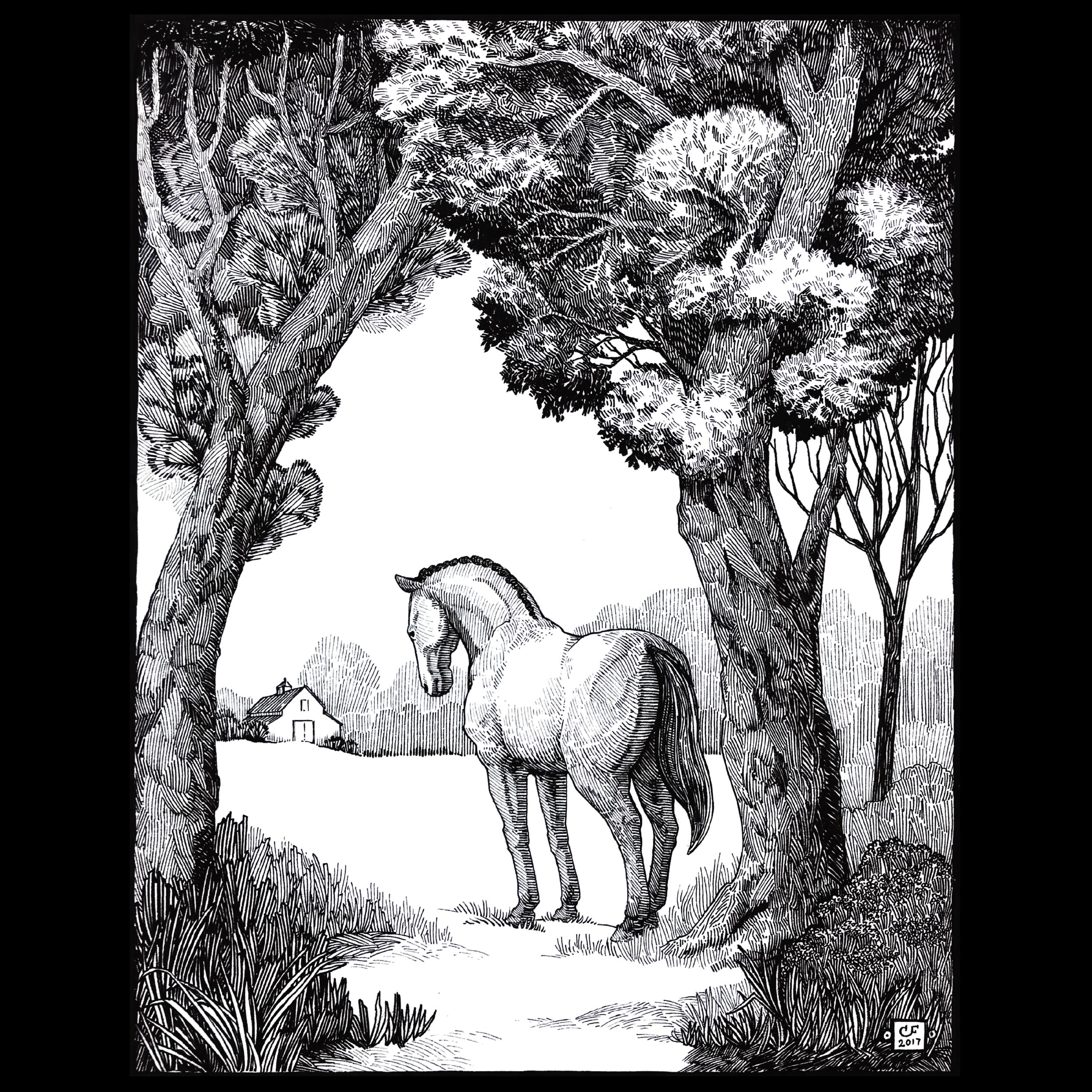 Narrative Illustration-02.png