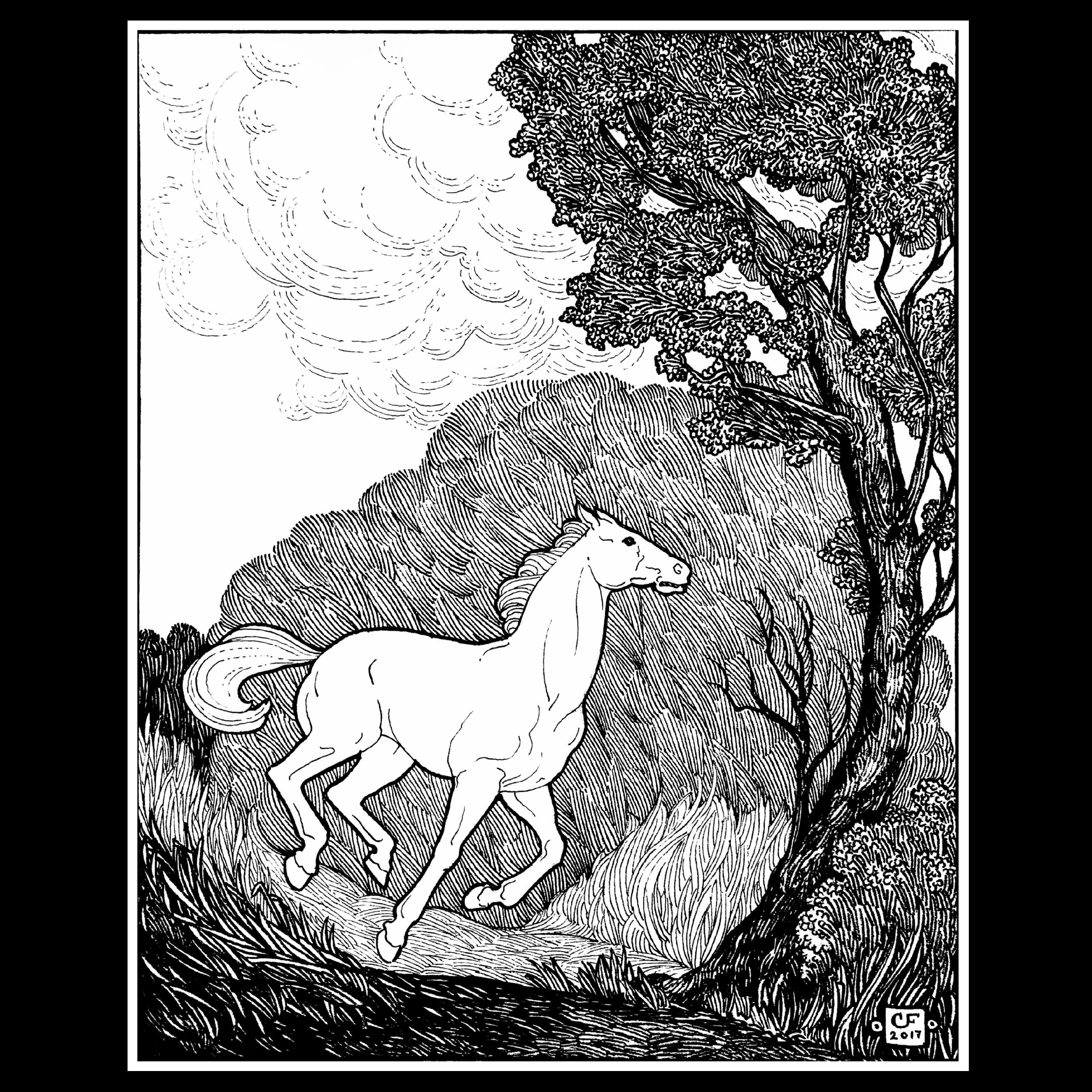 Narrative Illustration-04.png