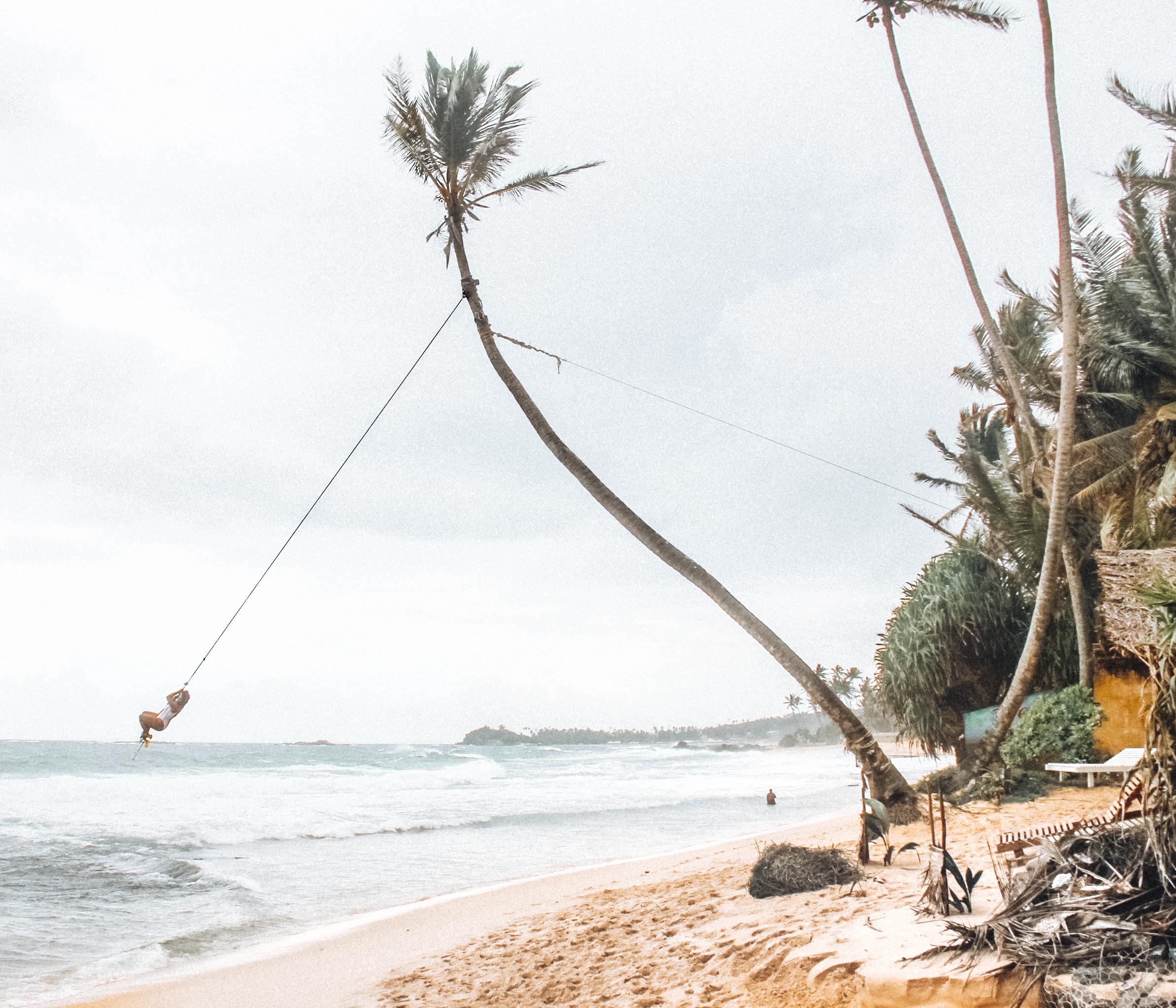 dalawella - Rope swing at Dream Cabana