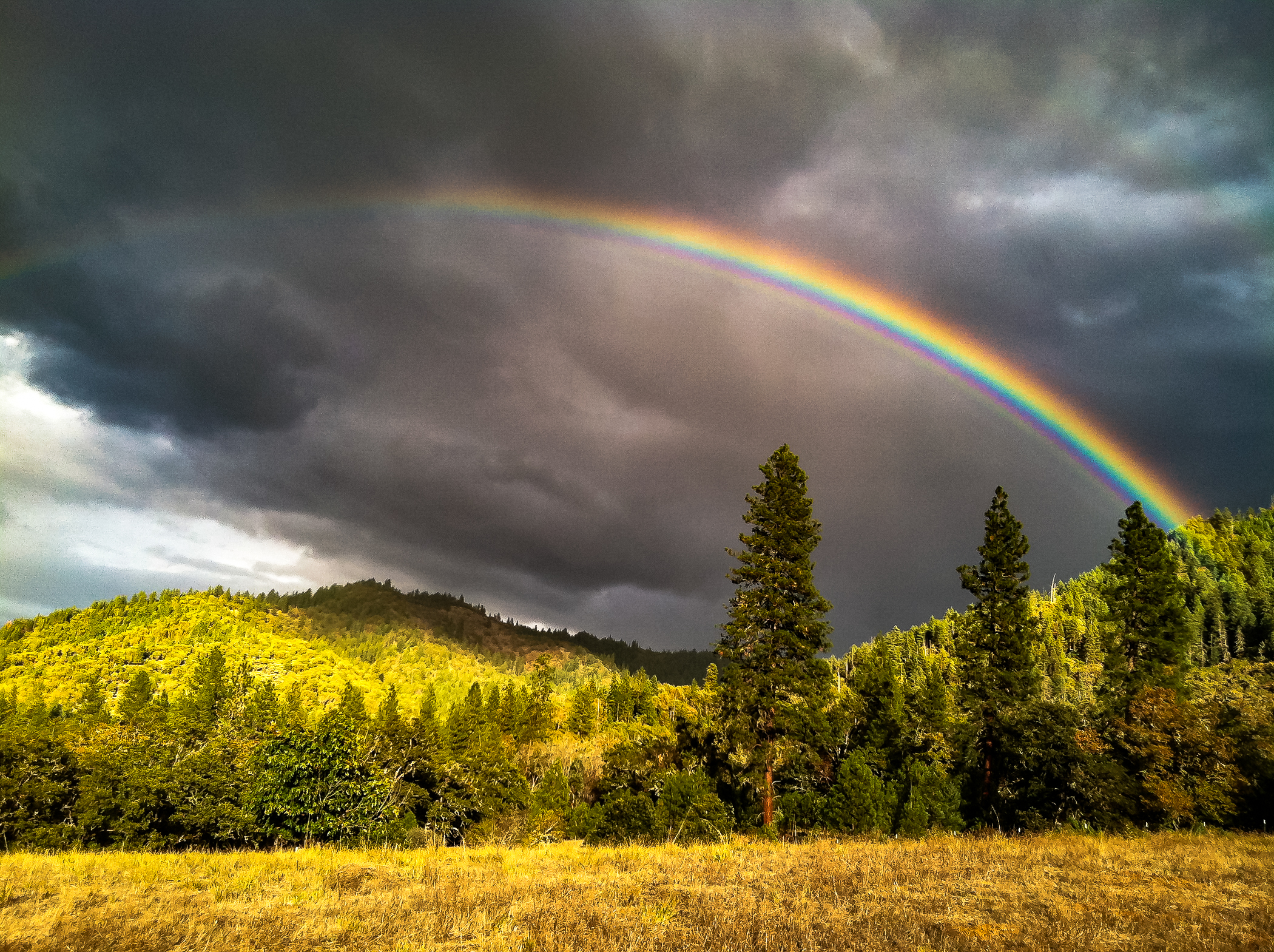 Findley_Rainbow-2139.jpg