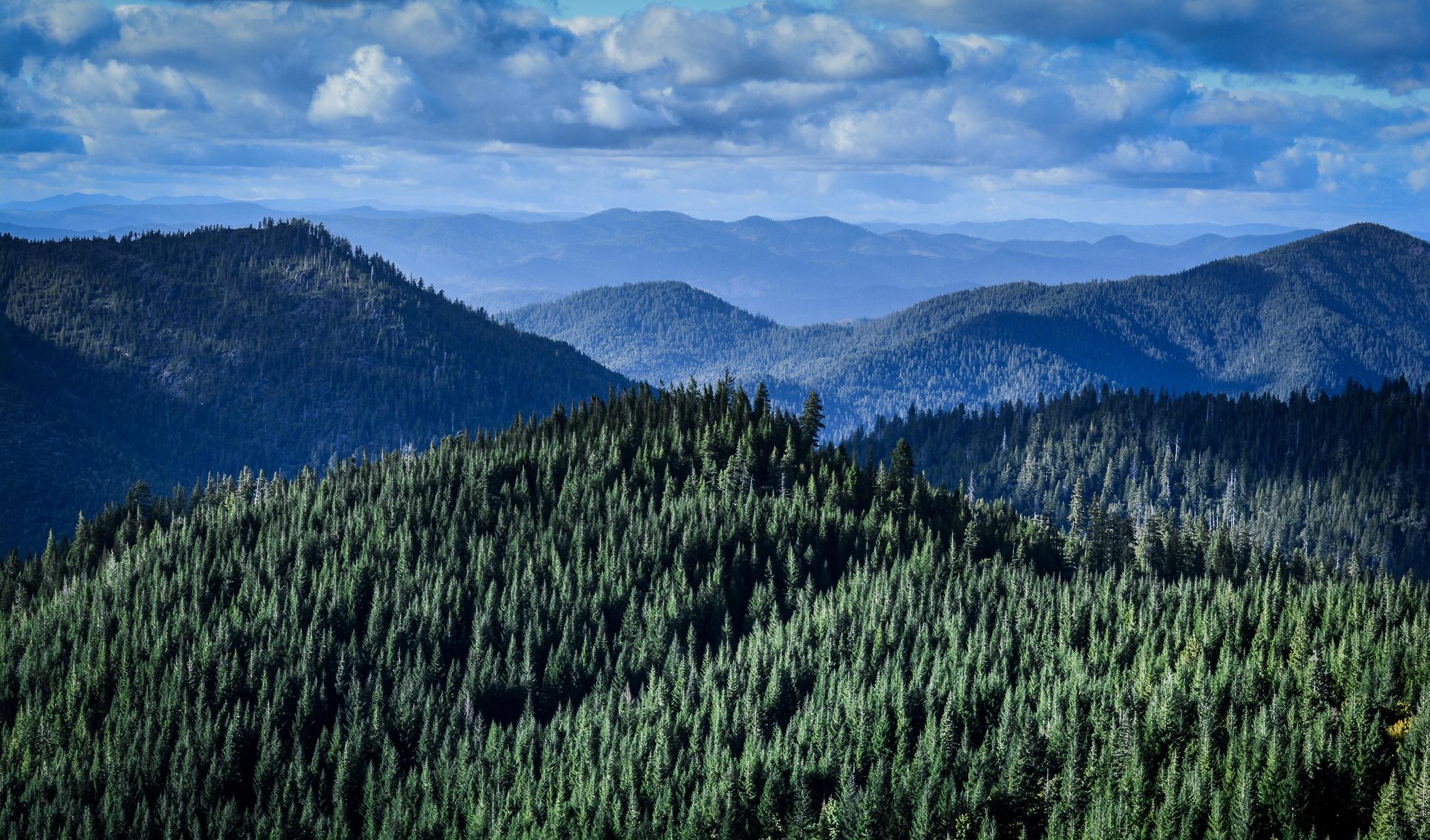 Oregon-3054.jpg