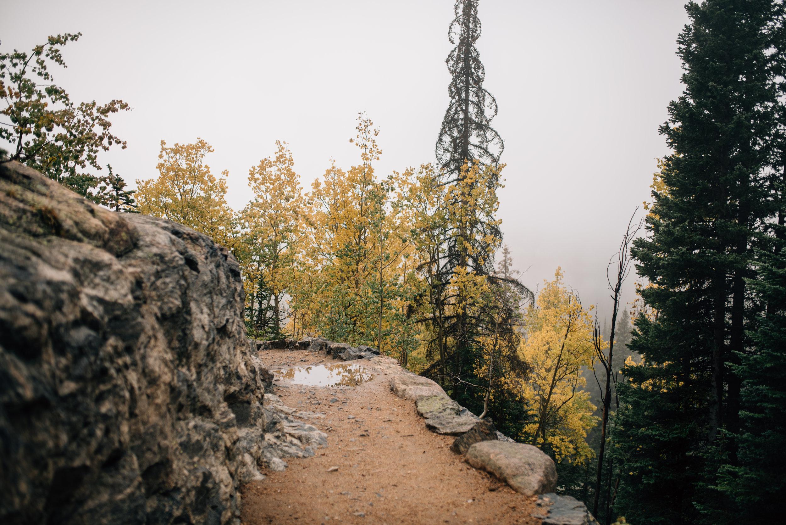 Rocky Mountain National Park in Colorado elopement photographer.