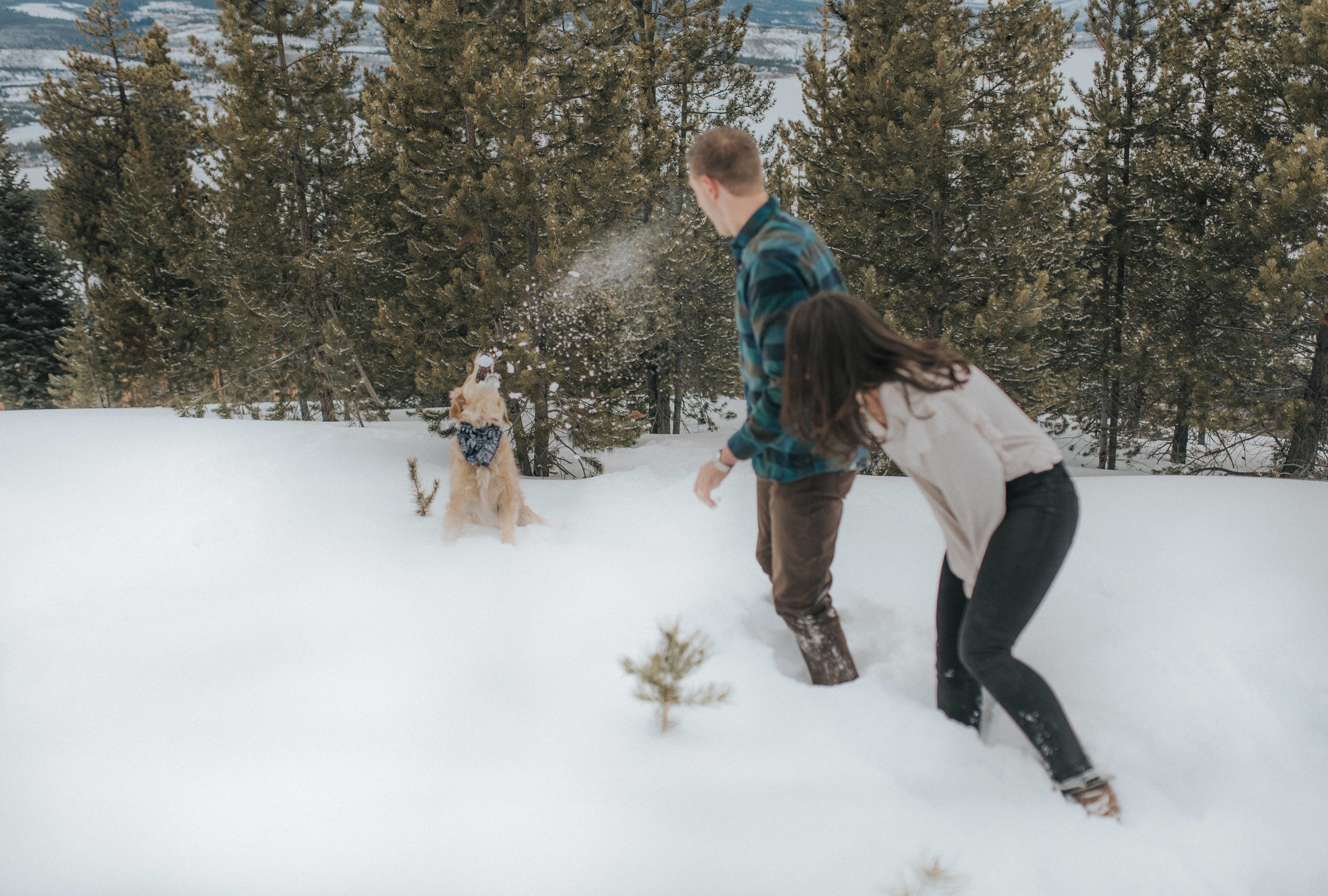 Denver based intimate wedding and elopement photographer.