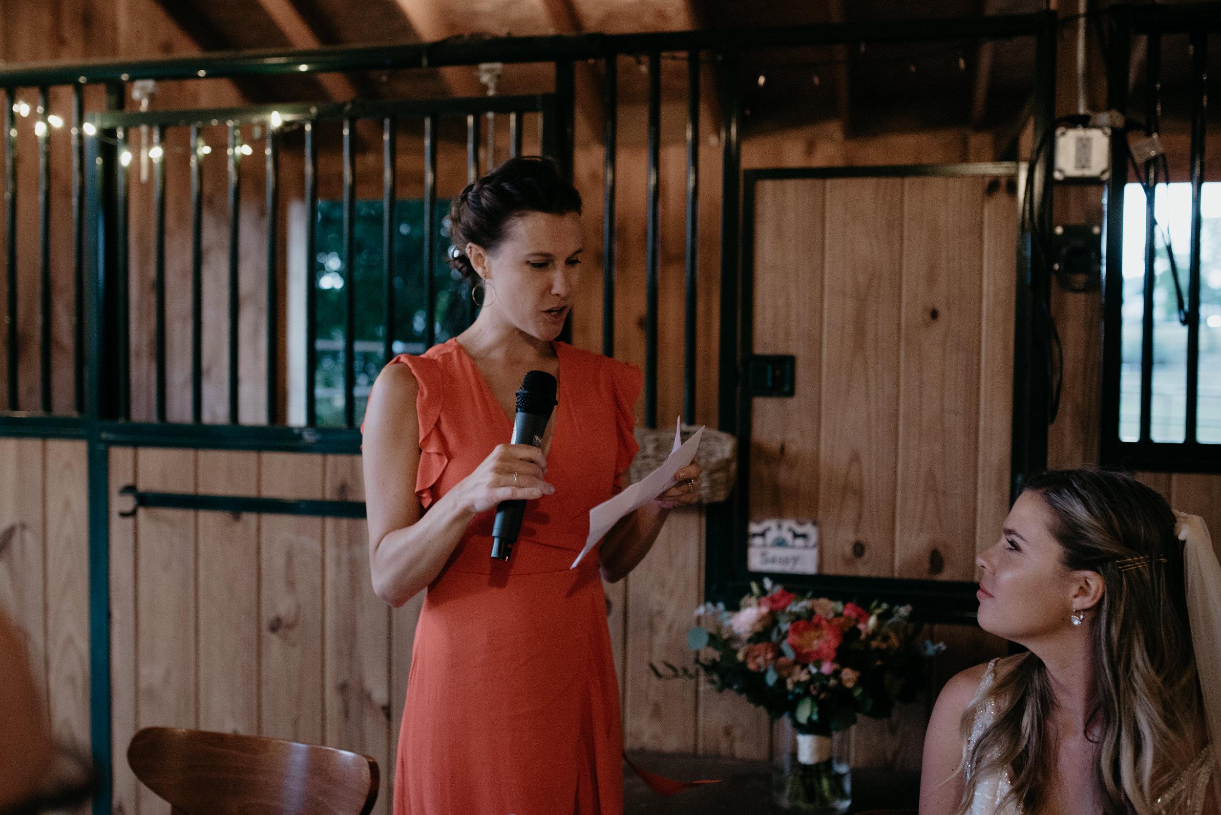 Reception toasts. Boulder, Colorado wedding photography.