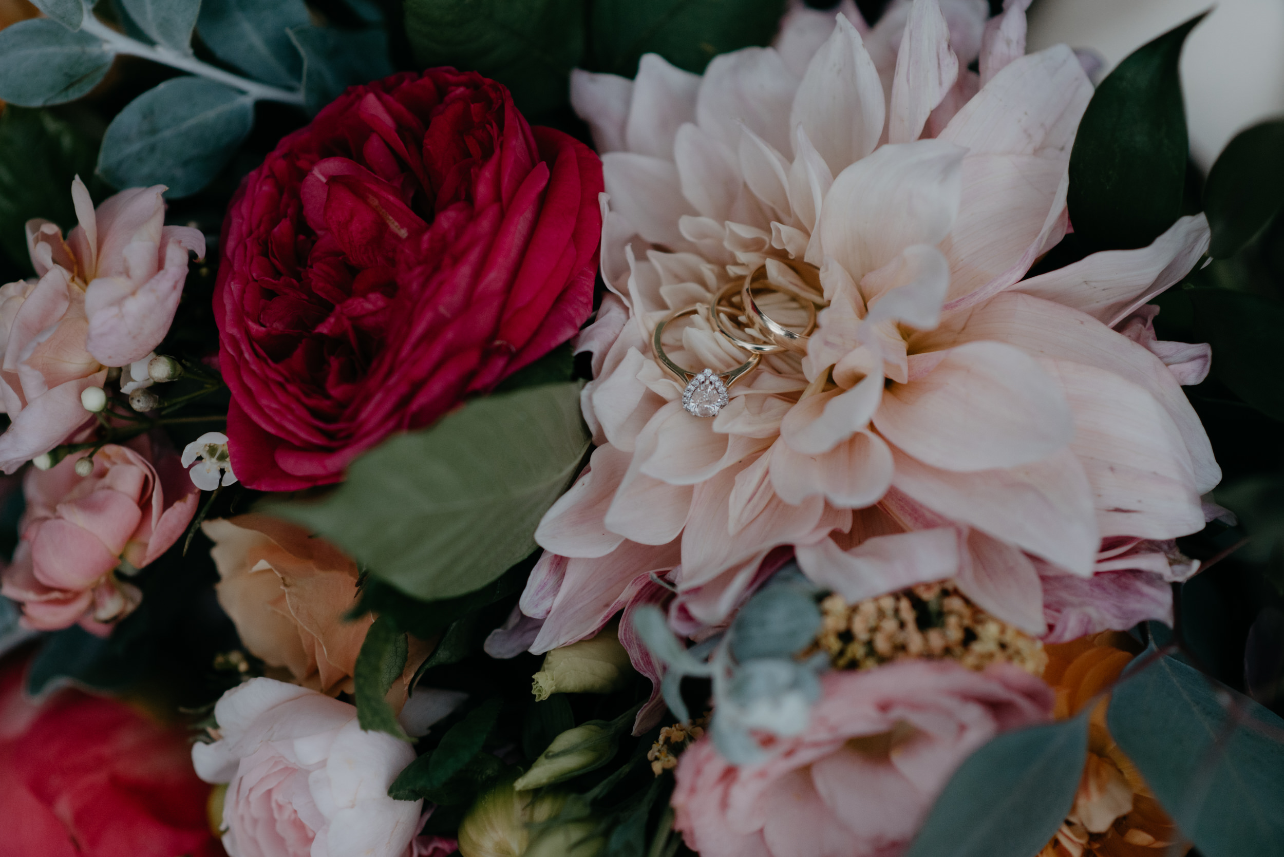 Ring shot by Alyssa Reinhold, Boulder wedding and elopement photographer. Colorado adventure wedding and elopement photos.