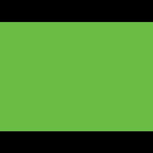 VERDELUX.png