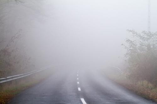 Fog Lights.jpg