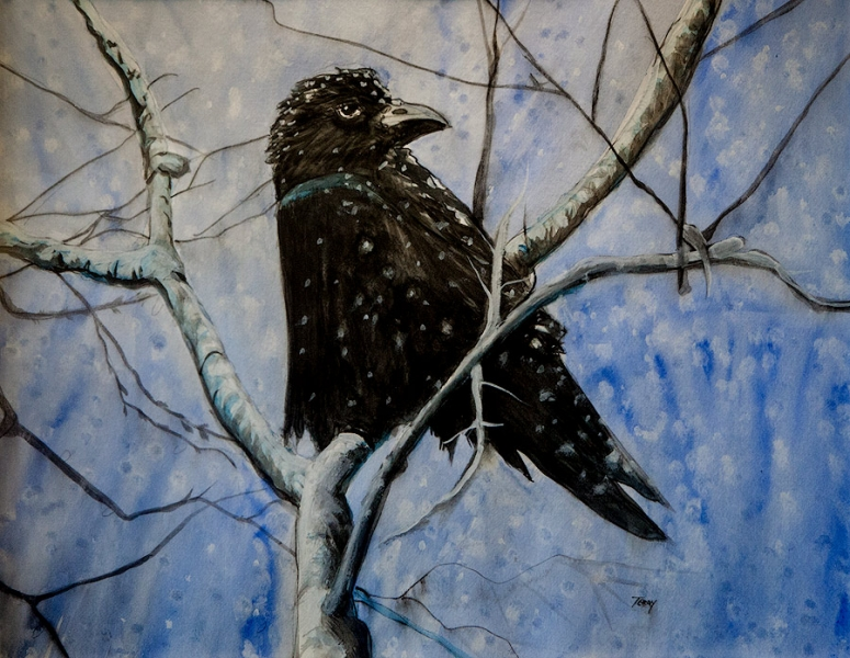 That Crow by Terry Johnson | $240