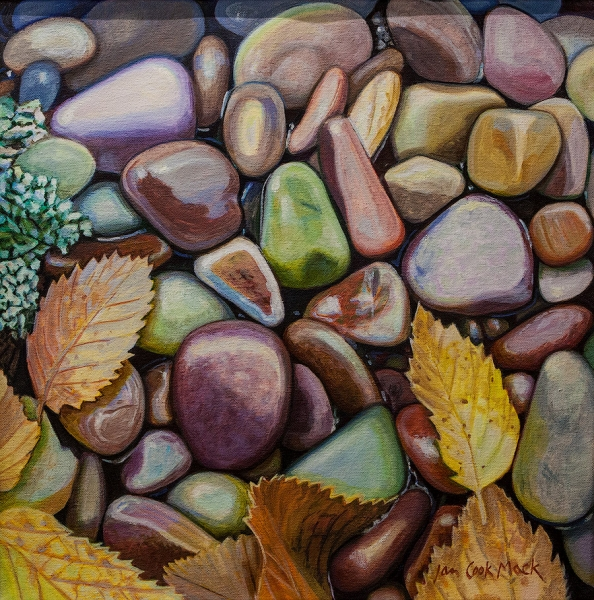 Lake McDonald Stones with Leaves and Lichen by Jan Cook Mack | $500