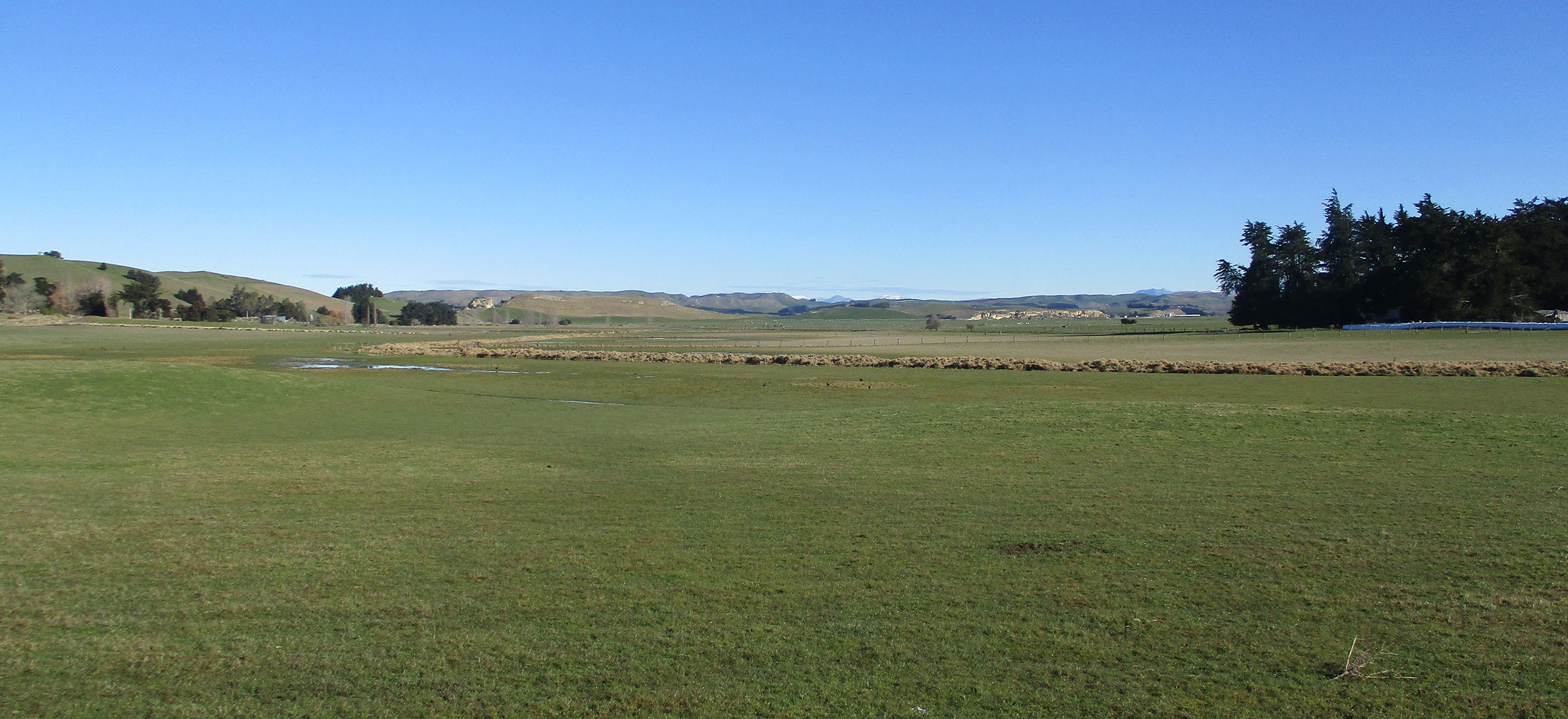 Farmland at Kapua, looking out towards Waihao Downs.