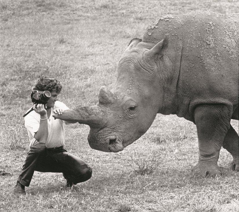 Darryn Lyons pets a Rhino
