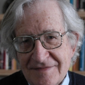 Noam Chomsky, Public Intellectual