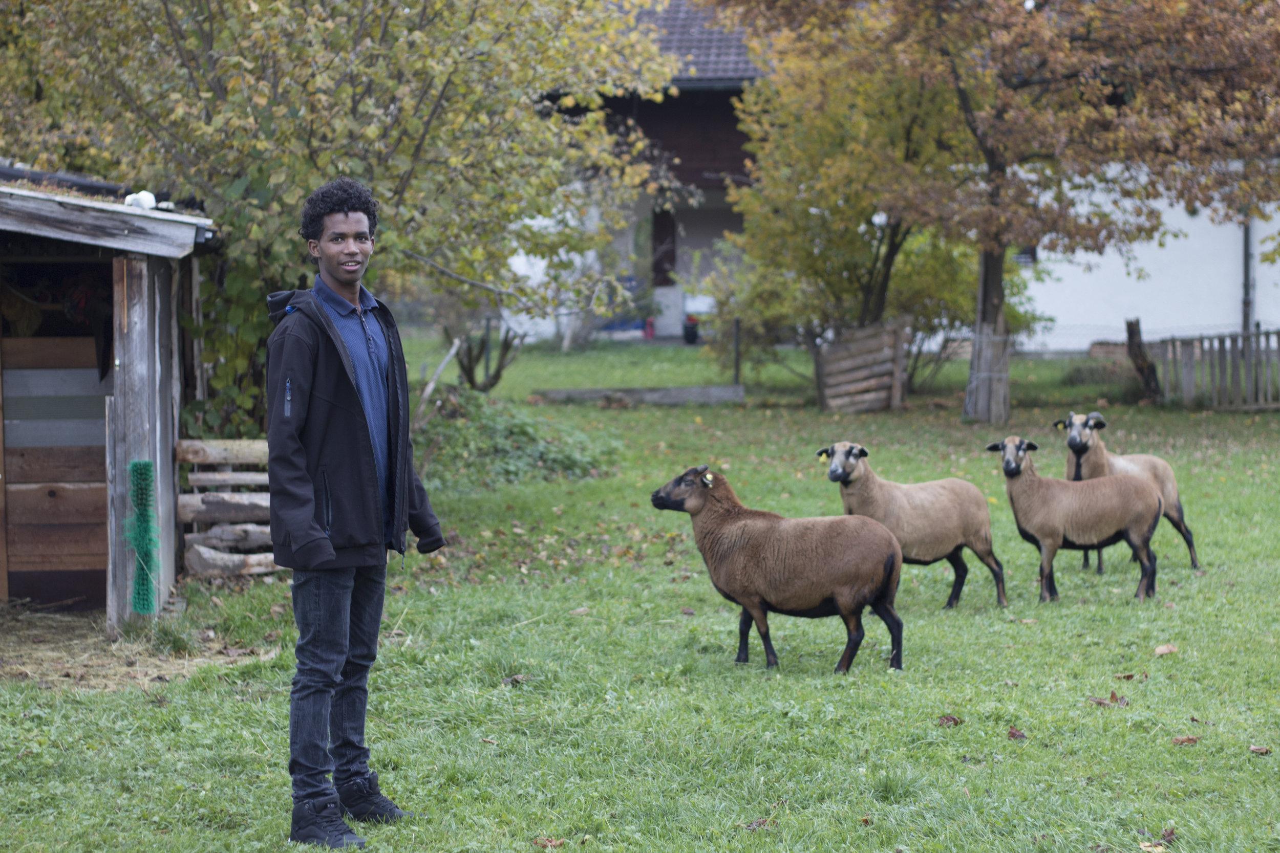 Eritrean refugee Ermiyas (17) in Bavarian Village Benediktbeuern for  tutitam.com