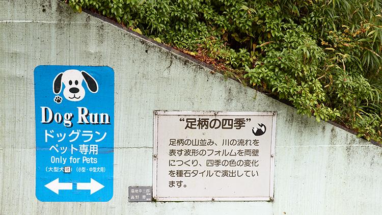 P_Japan_17.png