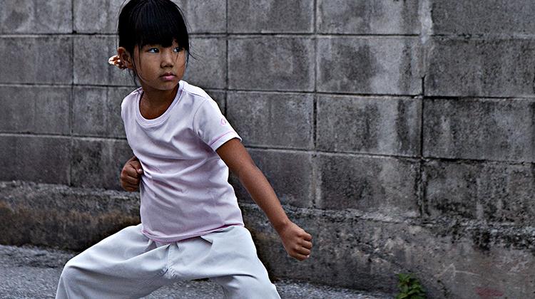 karategirl.picturizer.png